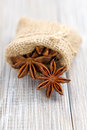Anise Royalty Free Stock Photos