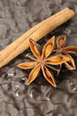 Anise And Cinnamon Stick on Chocolate Cake Royalty Free Stock Photo
