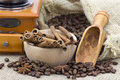 Anise, cinnamon sticks and coffee beans Royalty Free Stock Photos