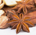 Anise and cinnamon on white Stock Image
