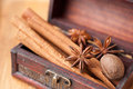 Anise Star, cinnamon and nutmeg in a chest Stock Photography