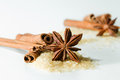 Anise star and cinnamon sticks closeup of an with on a white background Royalty Free Stock Photo