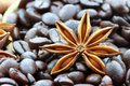 Anise Star and Coffee Beans Royalty Free Stock Images