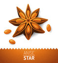 Anise star over white background Royalty Free Stock Images
