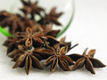 Anise star pouring out from green saucer Stock Photography