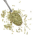 Aniseed herb in a silver spoon over white background pimpinella anisum Stock Image