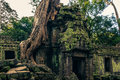 Ankor the lost city ta prohm of relic in autumn days Stock Photos