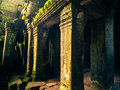 Ankor the lost city ta prohm of relic in autumn days Stock Photo