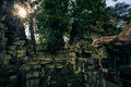 Ankor the lost city ta prohm of relic in autumn days Royalty Free Stock Photography