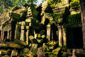 Ankor the lost city ta prohm of relic in autumn days i have more of them and more beautiful Royalty Free Stock Photography