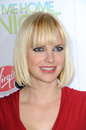 Anna Faris Stock Photo