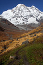 Annapurna山雪 库存图片
