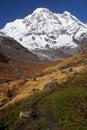 Annapurnabergsnow Arkivbilder