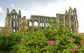 Another view of Whitby Abbey. Stock Photos