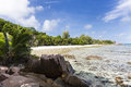 Anse severe la digue seychelles low tide at in with palm trees and granite rocks Stock Images
