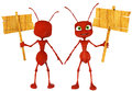 Ant cartoon holding a sing close up Royalty Free Stock Image