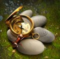 Ant compass and sea stones on autumn moss ground Royalty Free Stock Photography
