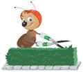 Ant gardener taglia il cespuglio il giardiniere con le forbici taglia le foglie Fotografie Stock