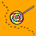 Ant and lollipop uninterested concept with Royalty Free Stock Photography