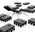 Ant Organizing Microchips Stock Images
