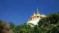 Ant's eye view of gold pagoda and natural plants Stock Image