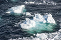 Antarctica pieces of floating ice antarctic peninsula climate change global warming Stock Photography
