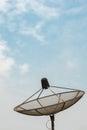 Antenna communication satellite dish on clear sky Royalty Free Stock Photo