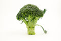 Anthropomorphic vegetables vegetables:a broccoli Stock Photo