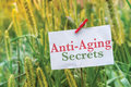 Anti Aging Secrets Royalty Free Stock Photo