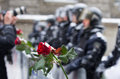 Anti government protest in ukraine flowers are left front of soldiers as a sign of piece shallow depth of field unrecognizable Royalty Free Stock Photography