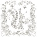 Anti stress abstract squirrel with nut, square flowering frame