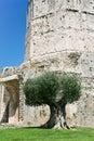 Antiker Magne Kontrollturm in Nimes Stockfoto