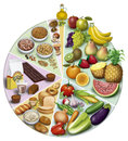 Antioxidant foods illustration of the wheel of the nutrients of the proportions of use aconsegables Stock Photo