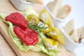 Antipasti fresh with cheese and bread Royalty Free Stock Image