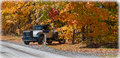 An antique auto mobile classic car from yesteryear old a century ago drives into old style colorful autumn country lane way on a Royalty Free Stock Photos
