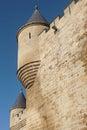 Antique castle battlement detail in olite navarra spain vertical Stock Image