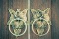 Antique Door knocker Royalty Free Stock Photo