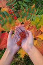 The antique Ethiopian Orthodox traditional cross in the woman's palms. Autumn leaves on background