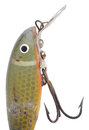 Antique fishing lure Royalty Free Stock Photo