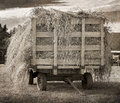 Antique Hay Wagon Royalty Free Stock Photo