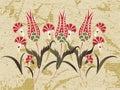 Antique ottoman grungy wallpaper rater design Stock Photos