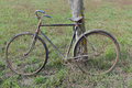 Antique or retro oxidized bicycle outside in the garden Stock Photography