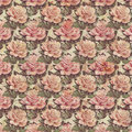 Antique Vintage style botanical pink floral roses background Royalty Free Stock Photo