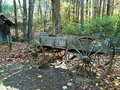 Antique wagon in the woods Royalty Free Stock Photo