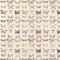 Antique watercolor butterflies illustrated patterned background Royalty Free Stock Photo