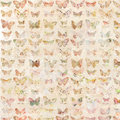 Antique watercolor butterflies illustrated patterned background