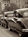 Antique wedding cars motor parked in a row Royalty Free Stock Photo