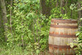 Antique Wood Barrel Left in a Forest Stock Photography