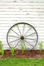 Antique Wooden Wagon Wheel on Rustic White Background Royalty Free Stock Photo