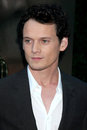 Anton Yelchin Royalty Free Stock Photos